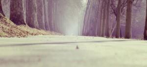 road-980x450